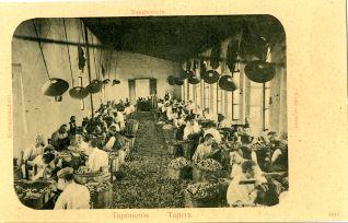 Corcho - Taponeros