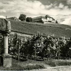Bodegas Schlob Johannisberg