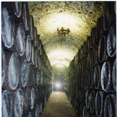 Bodegas Senda Galiana