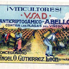 VSAD - Anticriptogámico Abelló
