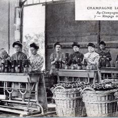 Champagne Louis Royer