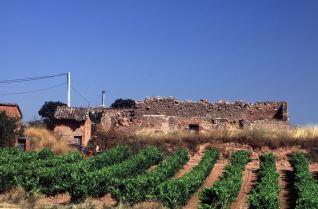 Barrio bodegas Torrecilla sobre Alesanco