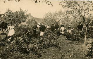 Familia en una viña