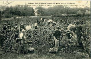 Chateau de Richemont