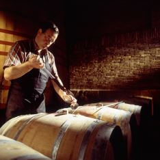 Vertido del vino