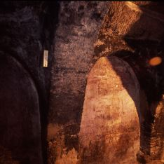 Detalle calao bodega Galilea