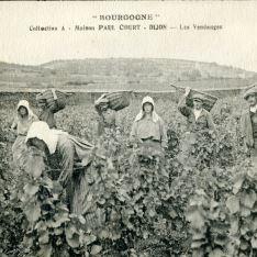 Bourgogne (Dijon)