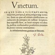 Vinetum, in quo varia vitium, vvarum, vinorum, antiqua, Latina, vulgariaqnomina
