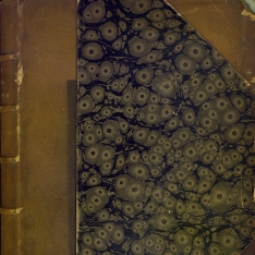 Traité général de viticulture: ampélographie (Tomo 7)